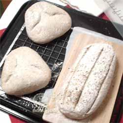 自家製酒粕酵母 ライ麦種で ハードブレッド -焼きに入る直前の状態
