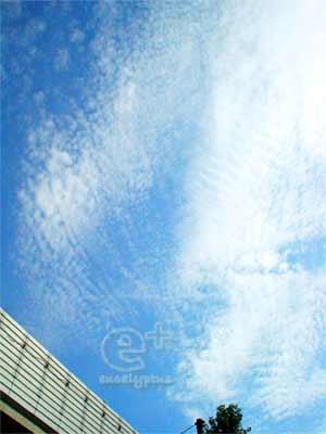 090820 高速道路ごしに空を見上げる