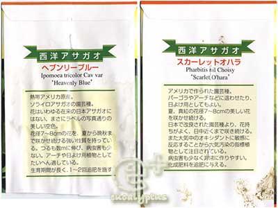 西洋朝顔「ヘブンリーブルー 」と 「スカーレットオハラ」商品説明(裏側)