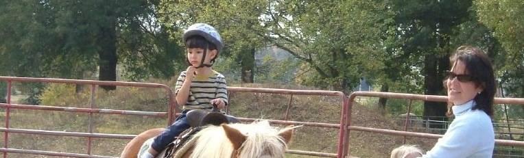 誠司、乗馬