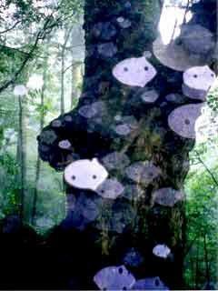 木霊のコダマン