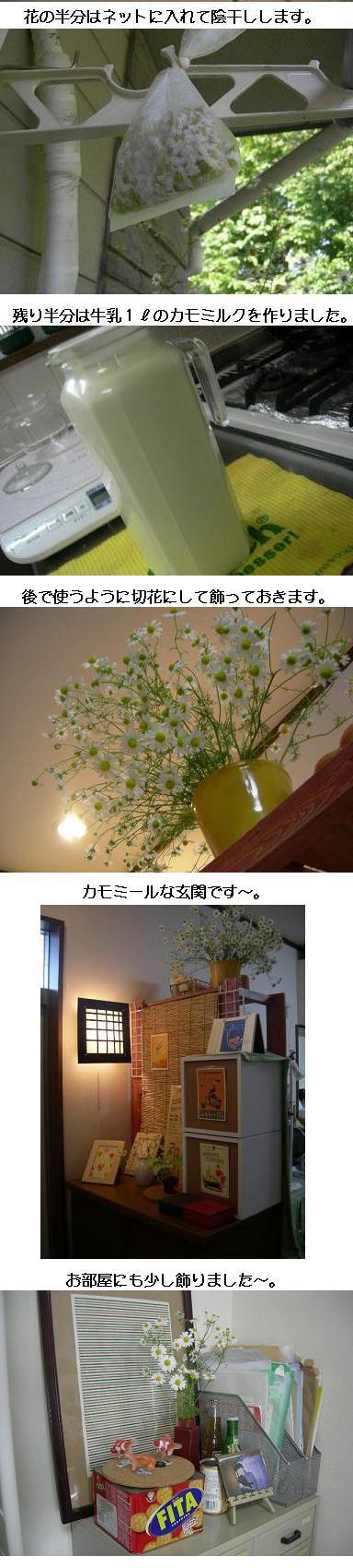 画像 029.jpg