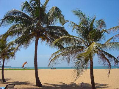 ニゴンボのビーチB.jpg
