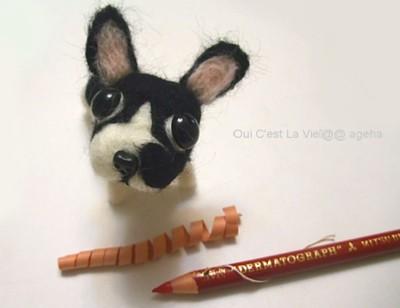 ダーマト犬。好きですダーマトグラフ。