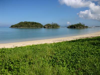 エージナ島