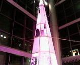 2005渋谷のツリー