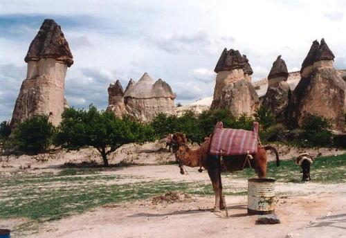 カッパドキア・キノコの奇岩とラクダ