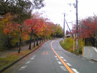 千里北公園から青山公園への道