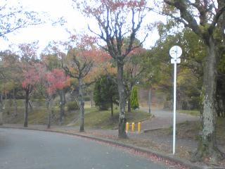 青山公園入口