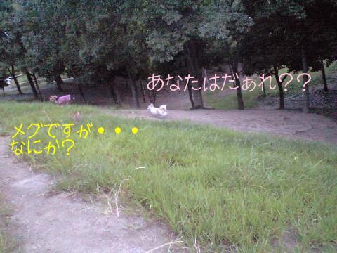 2009.8.29.18.14.jpg