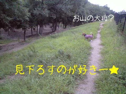 2009.8.29.18.18.jpg
