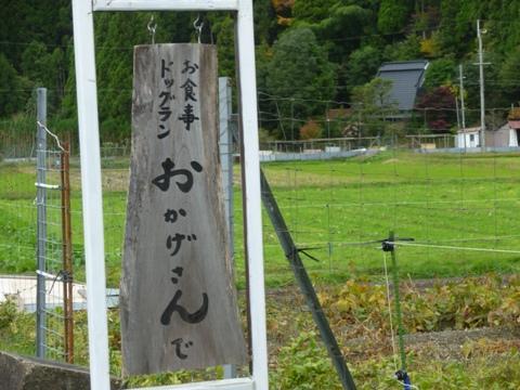 2009.11.2.12.20-2.JPG