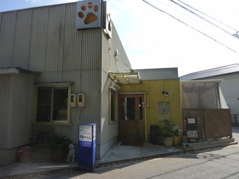 2009.11.8.11.04.JPG