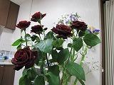 結婚記念日のお花1