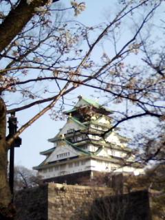 春の大阪城公園