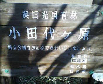 2007.11.15 小田代ヶ原その1
