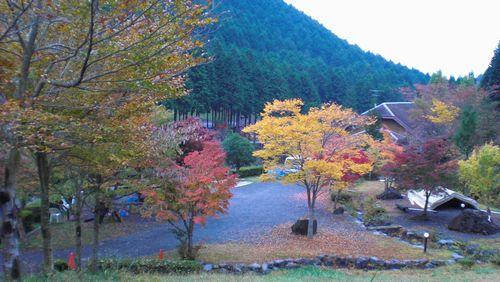天子の森1.jpg