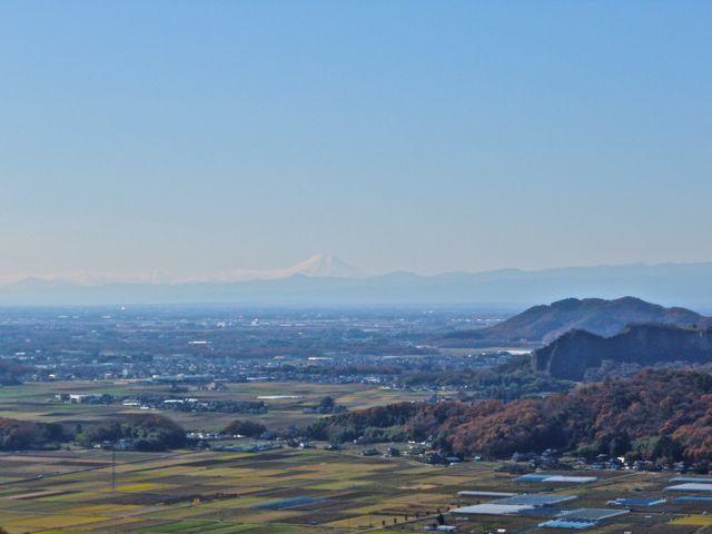 謙信平から富士山.jpg