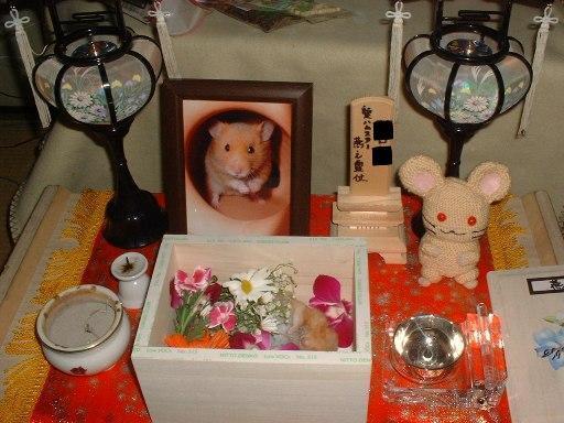 燕さん 葬儀3