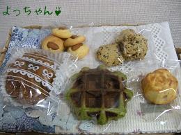 よっちゃん111214.jpg