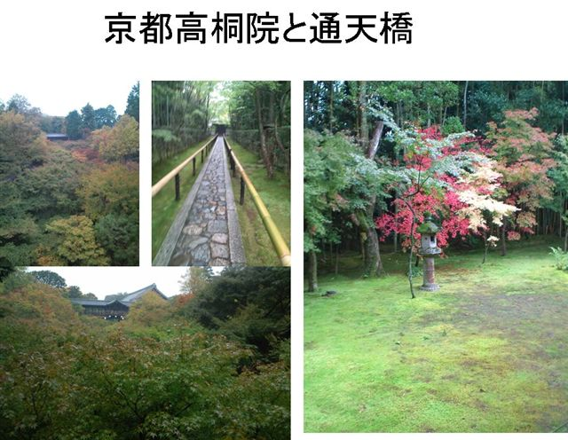 2011年11月高桐蔭-東福寺通天橋1.jpg