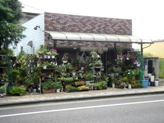 flower_shop_ayaka.jpg