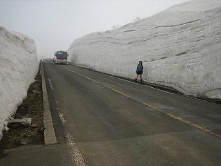 雪の壁ヽ(^o^)丿