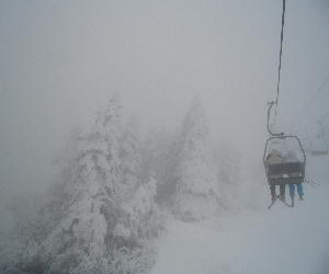 CIMG7599初日は雪.JPG