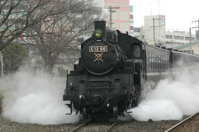 D70-20080316-103401.jpg