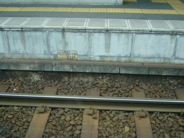 D70-20080319-160932.jpg