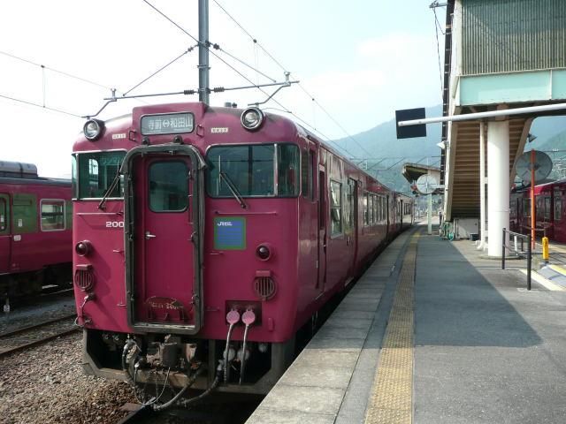 P1020501.jpg