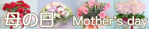 スタジオHiro・フラワーギフト・母の日・花の贈り物