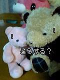 07-05-03_21-13.jpg