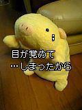 07-05-20_20-10.jpg