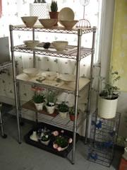 陶器&植物.jpg