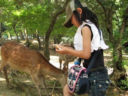 鹿さんにおせんべいですよ.JPG