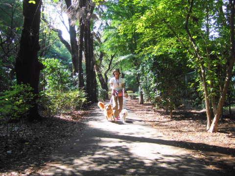 2010_0921神代植物公園1.jpg