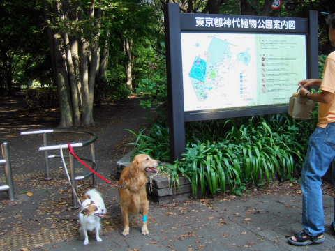 2010_0921神代植物公園2.jpg