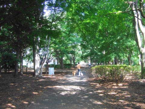 2010_0921神代植物公園3.jpg