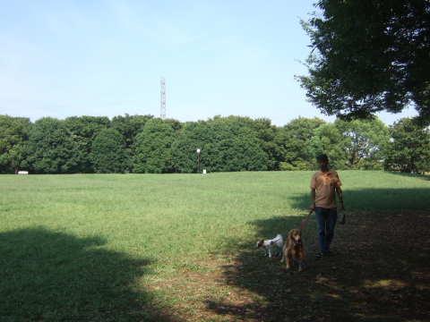 2010_0921神代植物公園5.jpg