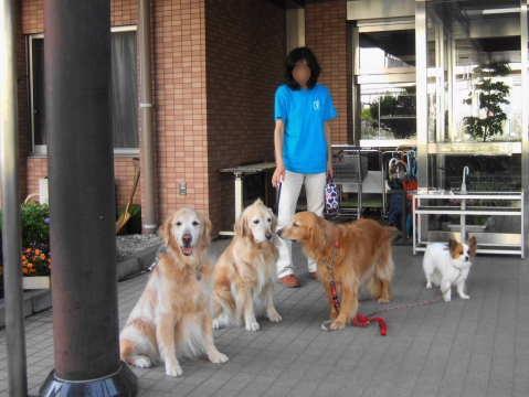 2011_0521清風園2.jpg