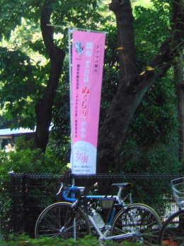 2010_0921ゲゲゲの女房のぼり旗.jpg