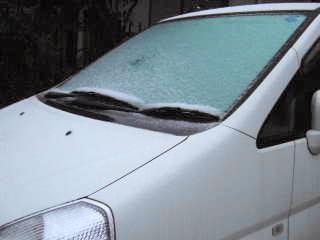 2010_0418-1雪です!320.jpg