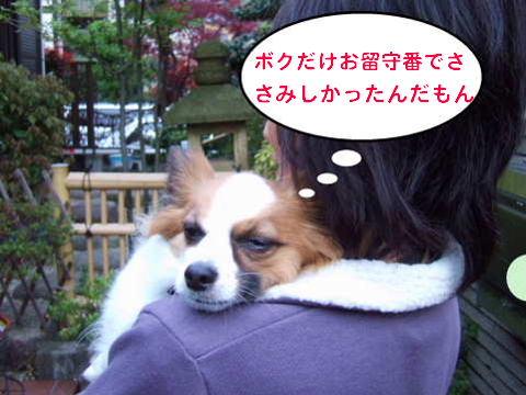 2010_0418-13訪問活動(そら1).jpg