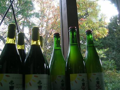 Vin Nouveau Blanc ・Rouge  2010