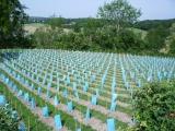 2006年6月フランス 013.jpg