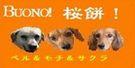 NEW桜餅バーナー.jpg
