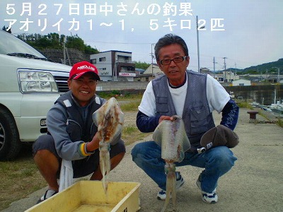 9_0527ika.jpg