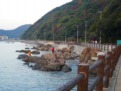 由良海釣り公園3