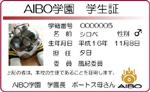 AIBO学園証